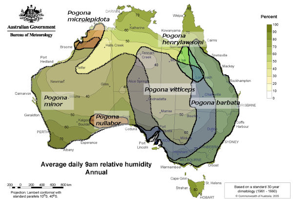 Average daily relative humidity in Australia with distribution of bearded dragons