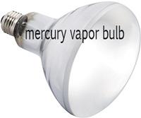 Mercury vapor lighting for bearded dragon housing
